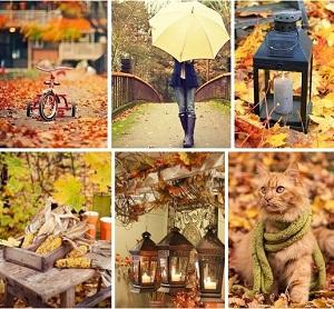 осень и красота