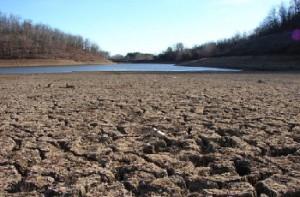 засуха на Украине