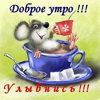 доброе новое утро